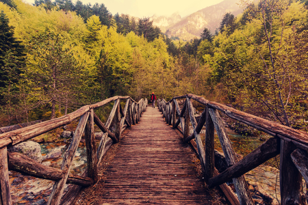Small bridge 免版税图像