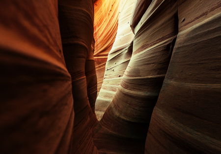 slot canyon: Slot canyon in Grand Staircase Escalante National park, Utah
