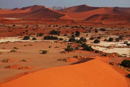 waterless: Sand dunes in Namib desert Stock Photo