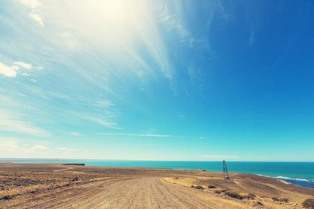birds desert: Patagonian Coast in Argentina Stock Photo