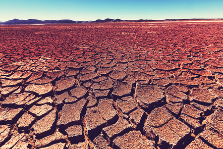 barrenness: Drylands in the desert