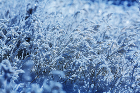 skie: Frozen grass in the mountain Stock Photo