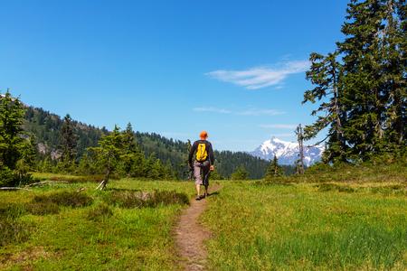 Backpacker in summer mountains 免版税图像