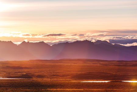 denali: Landscapes on Denali highway, Alaska. Instagram filter.
