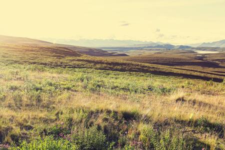 alpine tundra: Tundra landscapes above Arctic circle Stock Photo