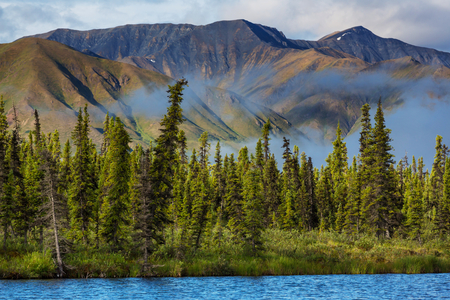 Mountains of Alaska in summer Stock Photo