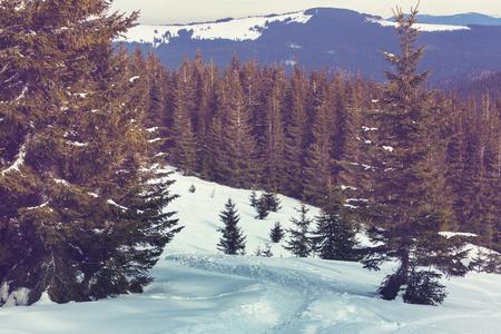 snow covered mountains: Snow covered mountains in winter