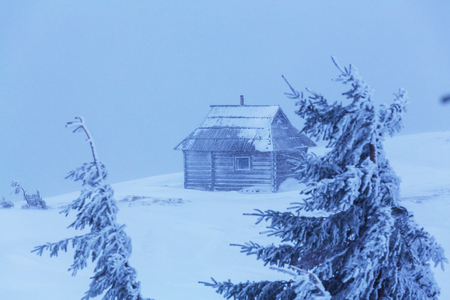 wooden hut: Wooden hut in the mountains in winter