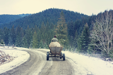 carpathian: Cart in Carpathian mountains Stock Photo
