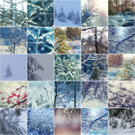 winter vacation: Winter vacation collage