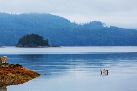 vancouver island: Vancouver Island.
