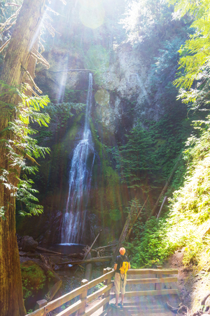 np: Waterfall in Olympic NP,USA Stock Photo