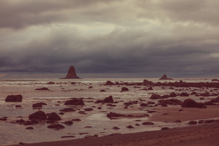 olympic national park: Scenic and rigorous Pacific coast in the Olympic National Park, Washington, USA