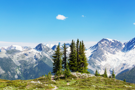 rockies: Picturesque mountain view in the Canadian Rockies in summer season Stock Photo
