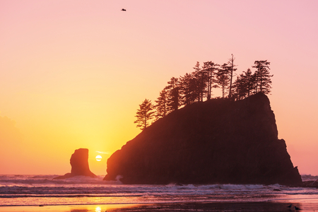 olympic: Scenic and rigorous Pacific coast in the Olympic National Park, Washington, USA. Rocks in the ocean and large logs on the beach.