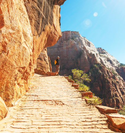 zion: Hike in Zion National Park