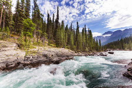 Scenic views of the Athabasca River, Jasper National Park, Alberta, Canada