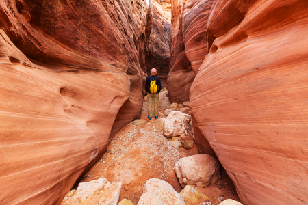 Slot canyon in Grand Staircase Escalante National park, Utah, USA. Unusual colorful sandstone formations in deserts of Utah are popular destination for hikers. photo