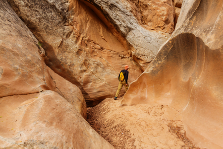 slot canyons: Slot canyon in Grand Staircase Escalante National park, Utah, USA. Unusual colorful sandstone formations in deserts of Utah are popular destination for hikers.