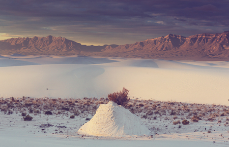 Unusual White Sand Dunes à White Sands National Monument, Nouveau-Mexique, États-Unis Banque d'images - 66977902