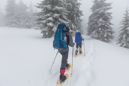 hikers: Hikers in the winter mountains