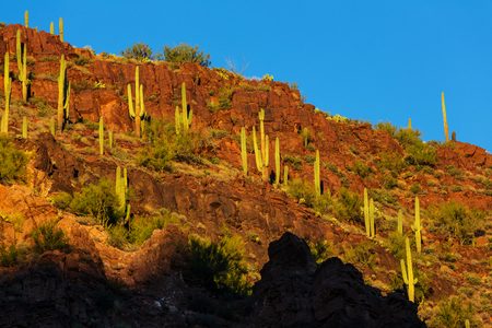 gunsight: Arizona landscapes,USA Stock Photo