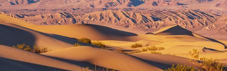 duna: Sand dunes in Death Valley National Park, California, USA