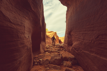 escalante: Slot canyon in Grand Staircase Escalante National park, Utah, USA. Unusual colorful sandstone formations in deserts of Utah are popular destination for hikers.