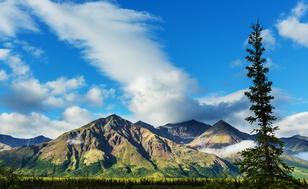 snowcovered: Picturesque Mountains of Alaska in summer. Snow covered massifs, glaciers and rocky peaks.