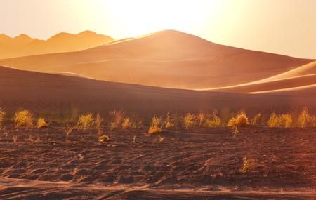 parch: Scenic sand dunes in desert