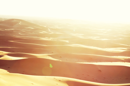 Les dunes de sable dans le désert du Sahara Banque d'images