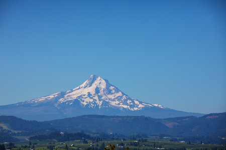 mount hood national forest: Mount. Hood in Oregon