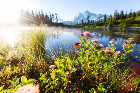 cascade: Scenic Picture lake with mount Shuksan reflection in Washington, USA Stock Photo