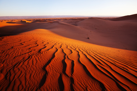 Unspoiled sand dunes in the remote desert
