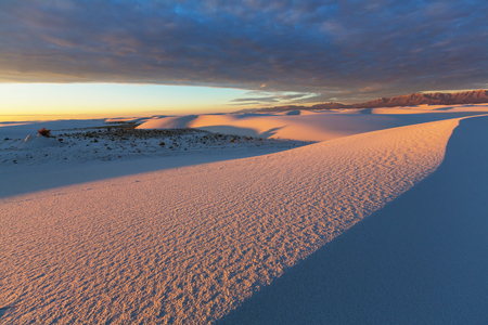 hummock: White Sands Park in USA