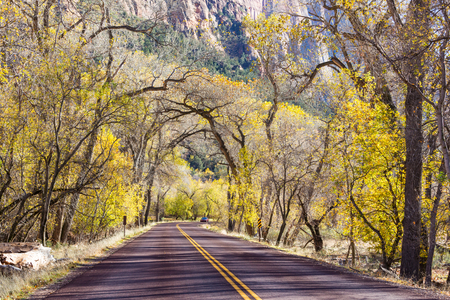 sierra nevada: Colorful Autumn scene on countryside road in the sunny morning in Sierra Nevada area