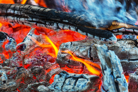 Bonfire in the fores Stock Photo
