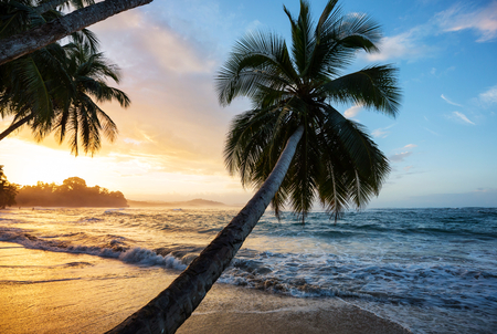Beautiful tropical Pacific Ocean coast in Costa Rica 스톡 콘텐츠
