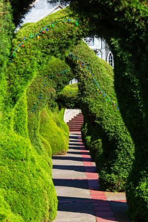 Beautiful evergreen landmark park in Costa Rica, Central America