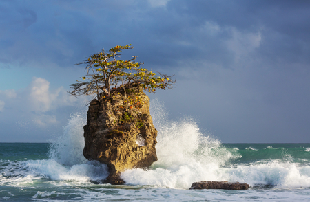 Beautiful tropical Pacific Ocean coast in Costa Rica 스톡 콘텐츠