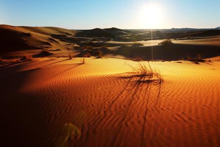 Sahara Standard-Bild - 95973818
