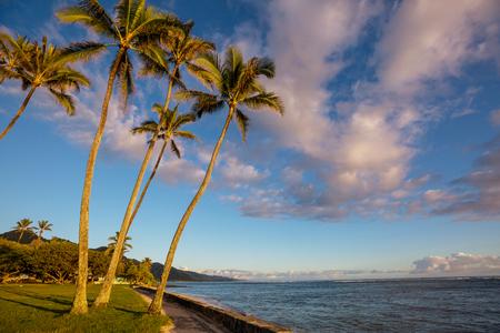 Amazing hawaiian beach Imagens