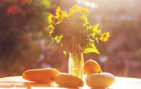 summer harvest in garden