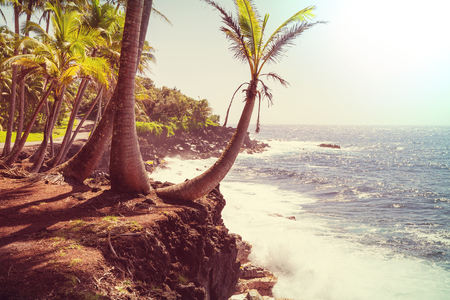Amazing hawaiian beach Stock Photo