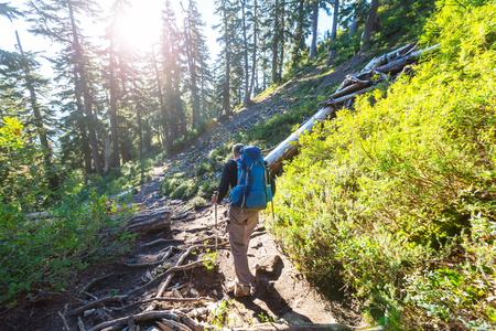 Man hiking bay the trail in the forest. Stock Photo