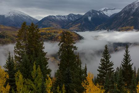 Bunter gelber Herbst in Colorado, USA. Herbstsaison. Standard-Bild