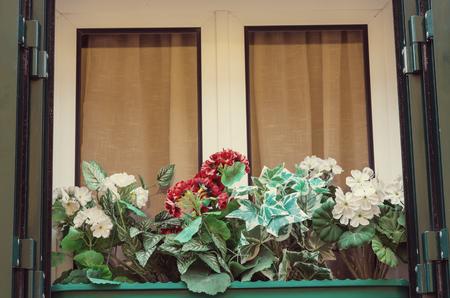 Flowers on window