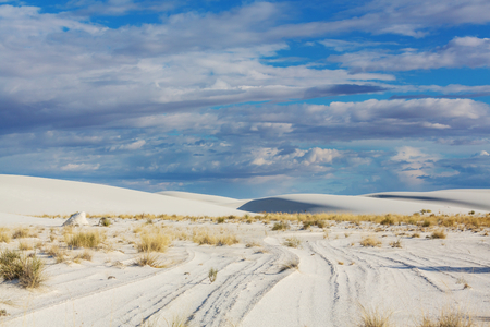 Unusual White Sand Dunes at White Sands National Monument, New Mexico, USA Banque d'images - 115851669