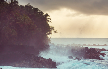 Hawaiian coast Reklamní fotografie