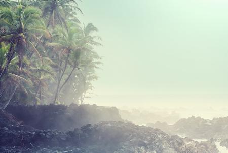 Hawaiian volcanic coast